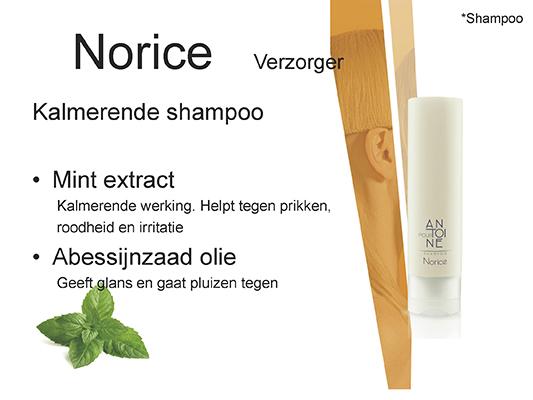 Norice