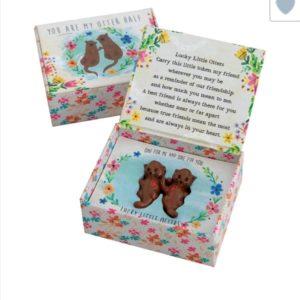 lucky little tokens set otter klein doosje met otter beeldjes erin en de tekst: you are my Otter half