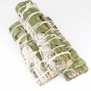 witte salie met eucalyptus bladeren. 3 rollen met de bladeren vast gemaakt met touw