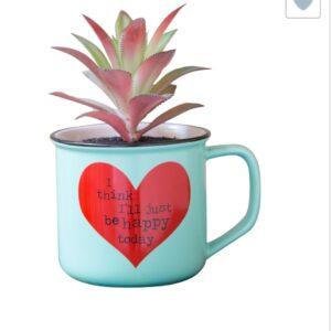 blauwe mok met kunstplantje met op de mok een rode hart met daarin de tekst i think ill just be happy today
